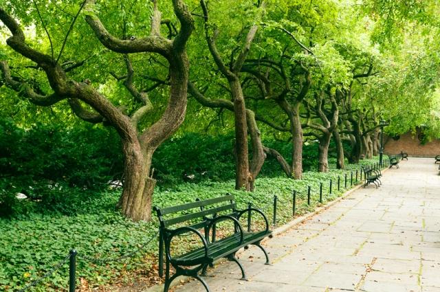 Central-Park-New-York-00