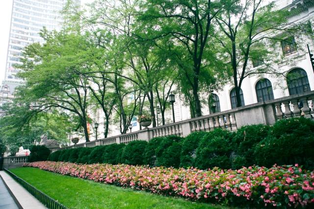 5th-avenue-public-library