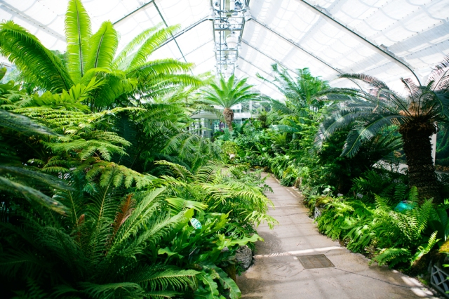 Botanical-Gardens-08