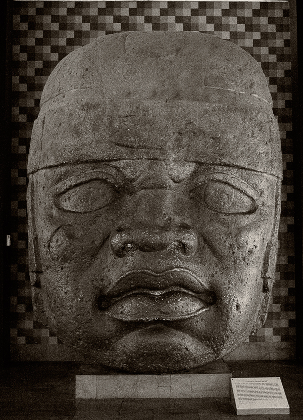 Museum-of-Natural-History-06-olmec-head