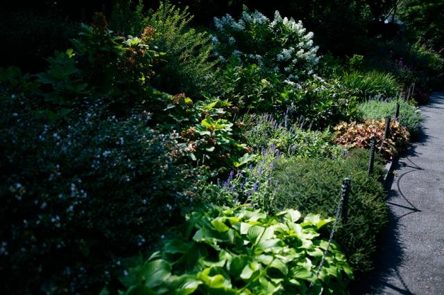 The-Cloisters-Garden-01
