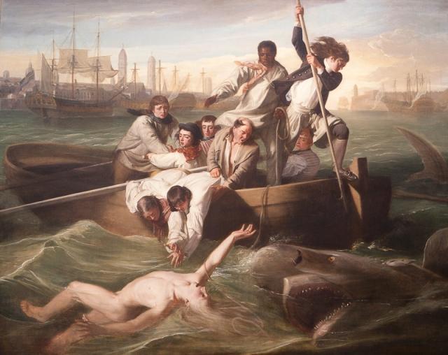 Washington-DC-53-National-Portrait-Gallery-shark-attack
