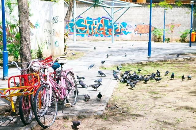 Rio-de-Janeiro-Rua-das-Laranjeiras-12