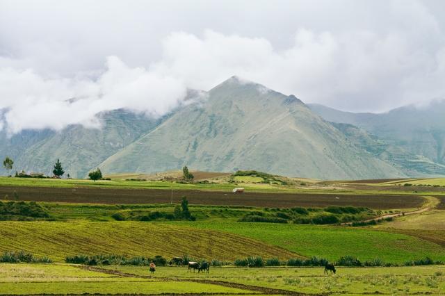Peru-Landscape-02