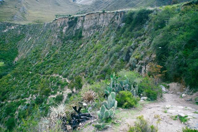 Inca-Trail---Camino-Inca-06