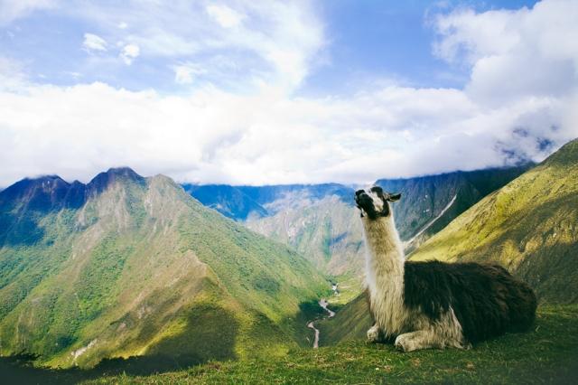 Inca-Trail---Camino-Inca-55