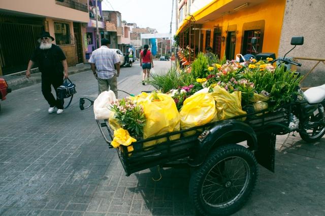 Lima-33