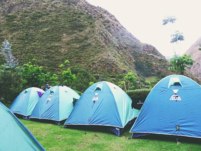 tendas2