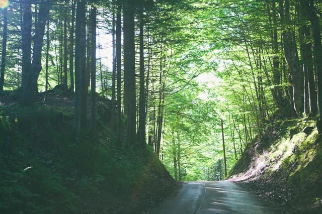 Roadtrip-to-Füssen-20
