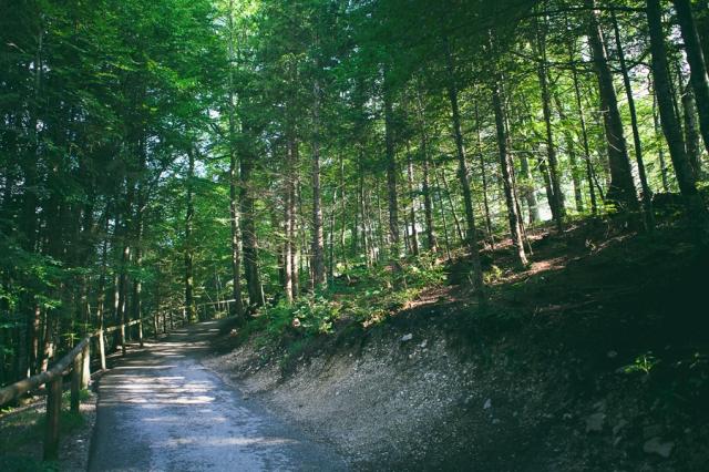 Roadtrip-to-Füssen-21