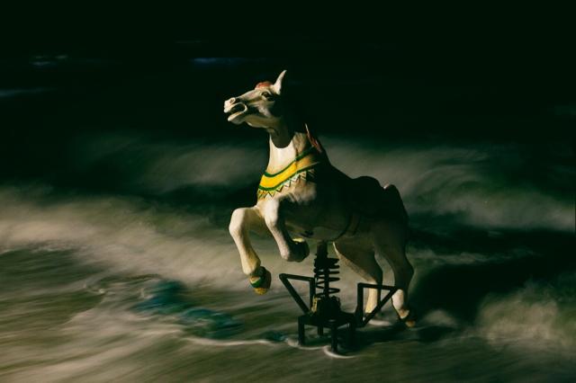 Seahorse-02-better