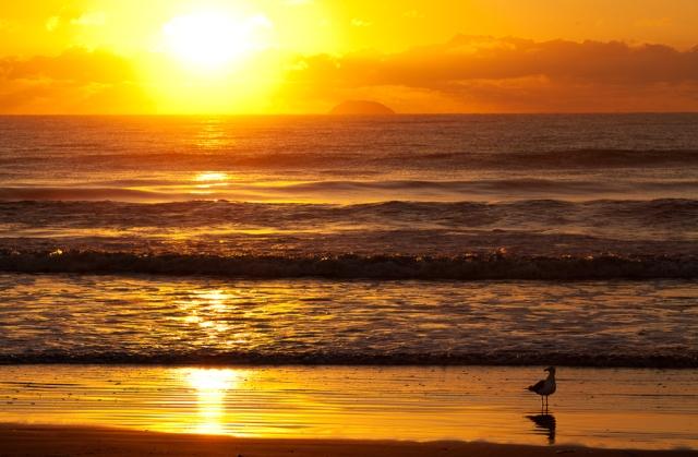 Praia-de-Leste-Pontal-do-Paraná-04