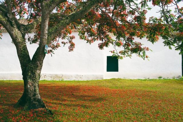 Trancoso-Bahia-06